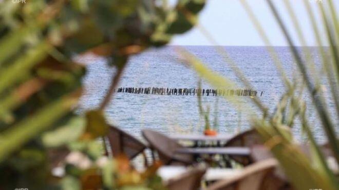 """Le """"SharkSafe Barrier"""", un nouveau dispositif anti-requin testé à Saint-Paul et l'Étang-Salé"""